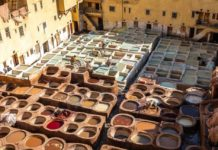 Action against 95 leather tanneries