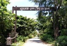 Lakhimpur Kheri Tiger Reserve