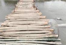 villagers built wooden bridge in lakhimpur kheri