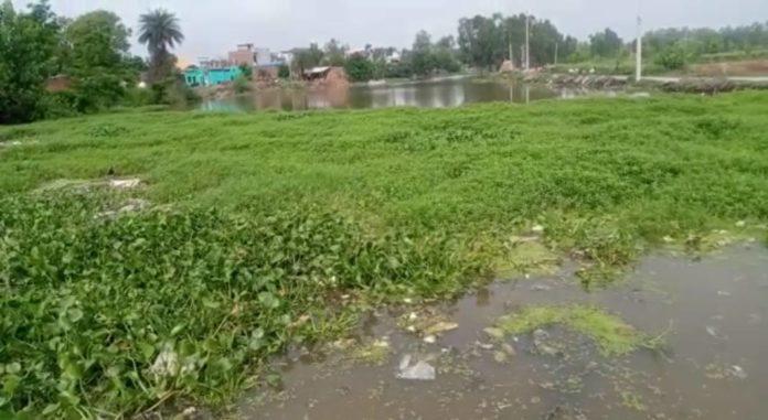 Possession of pond